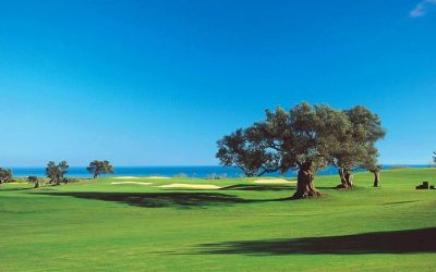 ROBINSON Club Quinta Da Ria – PORTUGAL 7. – 14. März '20
